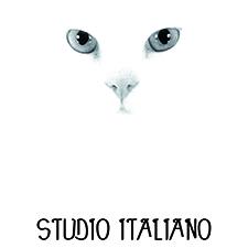 Studio Italiano partenaire Com1Even